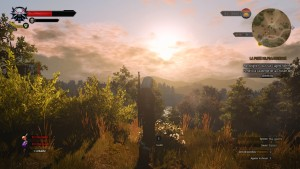 TheWitcher3 (13)