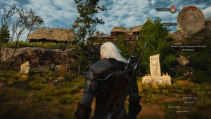 TheWitcher3 (18)