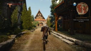 TheWitcher3 (7)